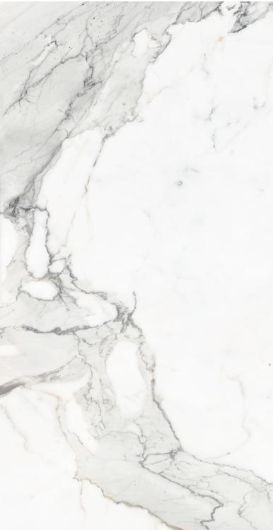 Calacatta Dorado Matte 12 x 24